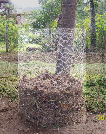 Resultado de imagem para compostagem doméstica com tela de arame